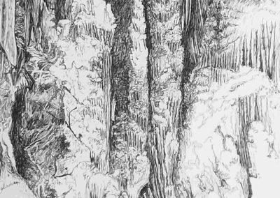 Pillar of Hercules – Orient cave -Jenolan, Australien